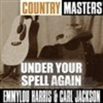 Country Masters - Under Your Spell Again